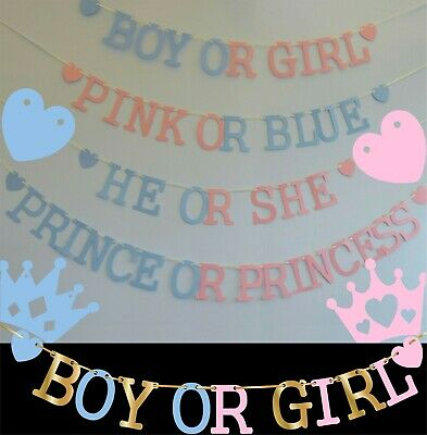 GENDER REVEAL Baby Shower BANNER boy or girl decorations bunting Pink OR Blue