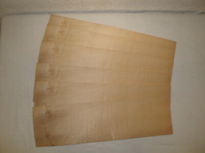 Placage ERABLE SYCOMORE 5/10 mm 14 x 50 cm Lot de 6 Bois Marqueterie Rénovation