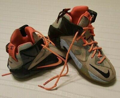 91253c74f86b5 Boys Nike LeBron XII Easter Basketball Shoes –Size 4Y 4 Youth Athletic shoes  1 ...