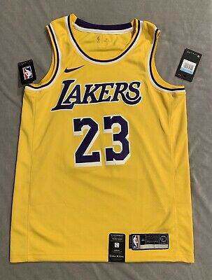 pretty nice c26ad bf478 NIKE LEBRON JAMES Lakers Icon Edition Swingman Jersey Mens Size M Aa7099 741