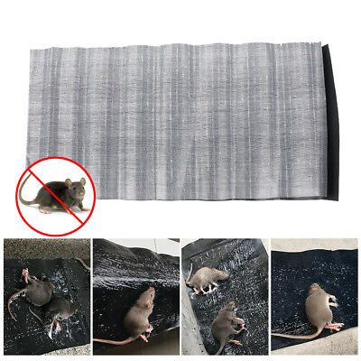 2X Mouse Glue Trap Board Extra Sticky Catch Bugs Catcher Pad Rat Cockroach Mat