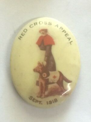 WW1 1918 Red Cross Appeal Day Button Badge Nurse & Dog Oval Shape