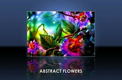 Flowers - Abstract ,Canvas Print, Framed, Unframed