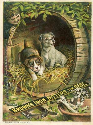 Brown's Iron Bitters*Puppies In A Barrel*Baltimore*Burrow Gies Litho*Trade Card