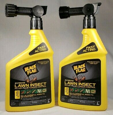 Black Flag Extreme Lawn Insect & Fungus Control Concentrate Spray 32 oz. 2-pack