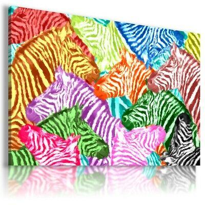 COLORFUL ZEBRA ANIMALS Abstract Modern Canvas Wall Art Picture BA51 UNFRAMED
