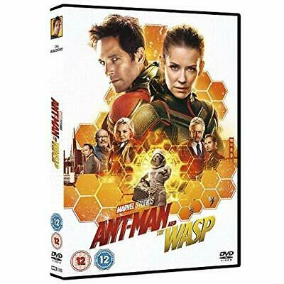 Ant-Man and the Wasp [DVD] [2018] DVD