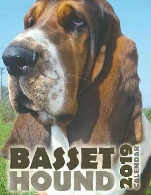 Basset Hound 2019 Calendar by Over the Wall Dogs 9781642521115 (Paperback, 2018)