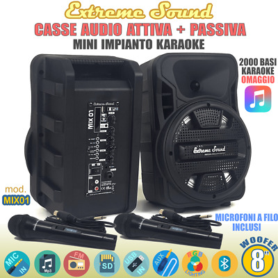 KIT CASSE KARAOKE 1100 Watt BLUETOOTH Radio+ SOFTWARE+ RADIOMICROFONI BUN-A-312