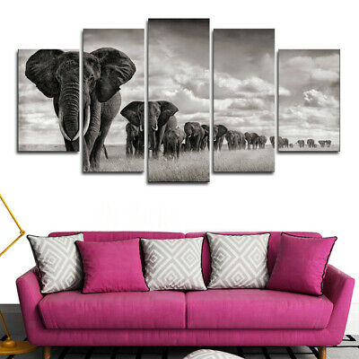 5Pcs Modern Abstract Canvas Painting Wall Art Print About Animal Landscape