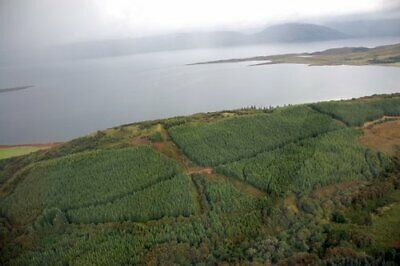 Half an Acre Of Land In Scotland Investment Holiday Getaway Landlord Laird