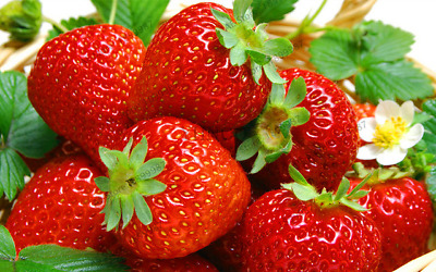 300 PCS Seeds Red Strawberry Garden Heirloom Vegetables Fruit Bonsai Creeper NEW
