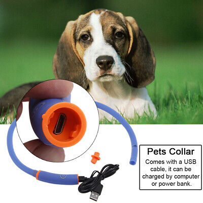 Pet Dog LED Light Flashing Puppy Night Safety Rechargeable USB Led Dog Collar