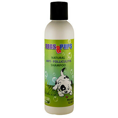 Medicated Shampoo Treatment Dog Folliculitis Ringworm Hot Spots Dandruff 6.0 OZ