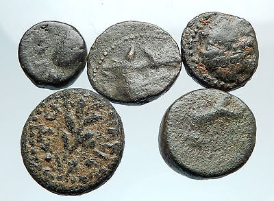 AUTHENTIC Ancient 400BC-250AD GREEK - 5 COINS Group Lot KIT Collection i74925