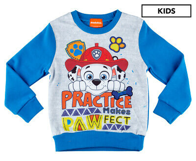Paw Patrol Boys' Practice Makes Pawfect Sweater - Blue
