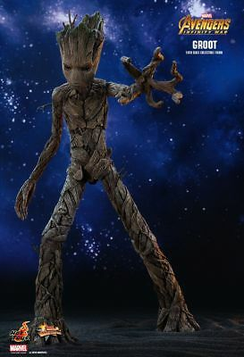 Hot Toys* AVENGERS: INFINITY WAR GROOT 1/6TH SCALE MMS475*brown shipper*