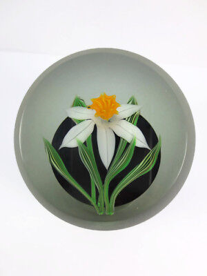 Correia 1985 Limited Edition Art Glass Daffodill Flower Paperweight Signed