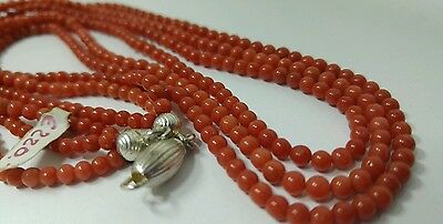 Natural italian Red Coral necklace 3.6 mm 3 wires, 46 cms.silver clasp,