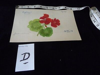 #927D  antique Hand painted  water colour  Signed  # ?  DATED 1914  FLOWERS