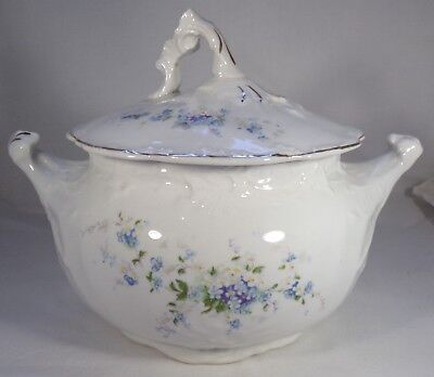 "Antique Sugar Bowl & Lid 6"" Tall Porcelain Forget Me Not Flowers Grindley? -"