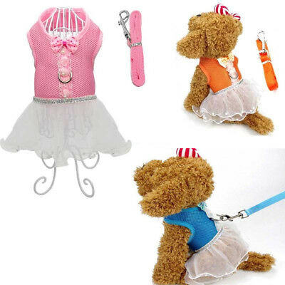 Small Dog Soft Mesh Control Harness Walking Leash Safety Strap Tutu Lace Dress