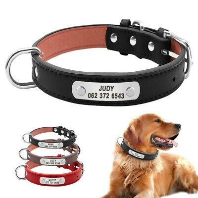 Leather Padded Personalized Dog Collar Pet ID Custom Durable Small Medium Large