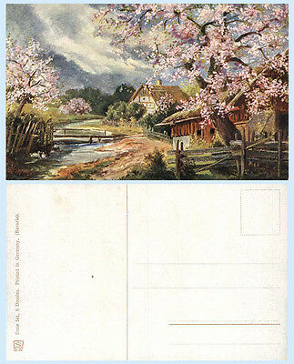 Cherry Blossoms on the River Art Postcard