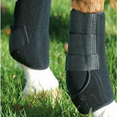 KITT Sport Support (choose from a range of sizes) - suitable for all disciplines