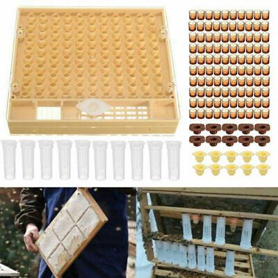 440pcs//set Beekeeping Tool Kit Queen Rearing System Cup Kit Comb Box Cell Cups