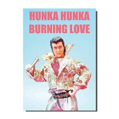 Image result for elvis hunka hunka