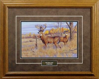 "Cynthie Fisher "" The Bryant Buck""Framed Print 21"" x 17"""