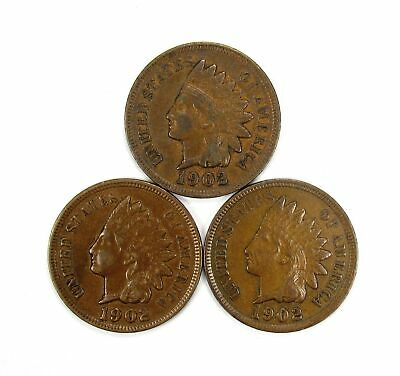 Lot of 3 1902 1c Indian Head Cent Penny XF Extra Fine /XF+ Full Liberty #137072*
