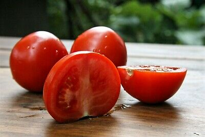 10 Seeds Rutgers Heirloom Tomato Vegetable seed- Sale