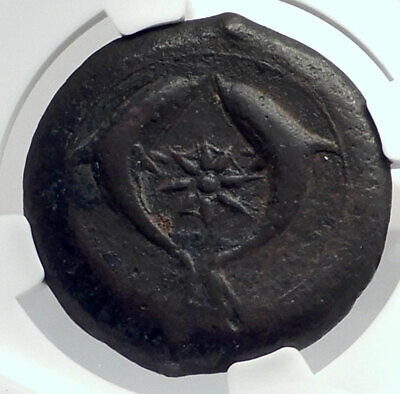 SYRACUSE SICILY 375BC Athena Dolphins Drachm Litra Ancient Greek Coin NGC i77287
