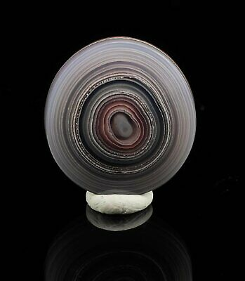 PURPLE PASSION Banded Agate Cabochon 12ct from Coyamito Mexico 37108