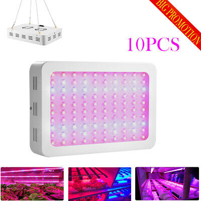 10 X 1000W LED Grow Light Panel Indoor Plant Hydroponic Veg Flower Seed Red Blue
