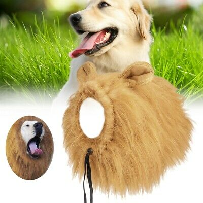 2019 NEWFashionable Synthetic Fiber Pet Dog Puppy Wig For Festival Party Cosplay