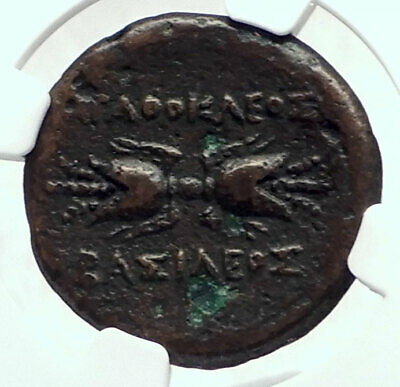 SYRACUSE Sicily Ancient 295BC Agathokles Greek Coin ARTEMIS  & BOLT NGC i77355