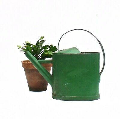 Vintage French Zinc Green paint Watering Can Arrosoir Nozzle Garden