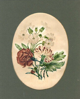 Early 20th Century Watercolour - Floral Study