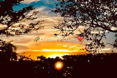 🌸 Photo Wallpaper Digital Picture, Free Worldwide Email Delivery, Nature Sunset