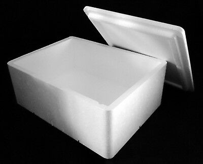 260 x 180 x 120mm THERMO INSULATION POLYSTYRENE BOX FOOD FISH REPTILE PERISHABLE