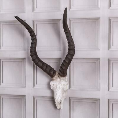Large Wall Mounted Antelope Skull Head Industrial Rustic Wall Art Hanging Chic