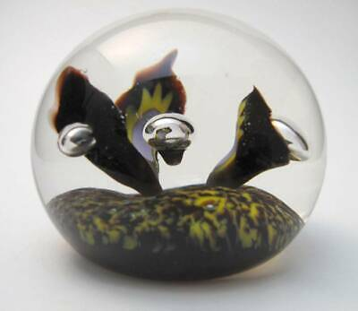 Caithness Glass Paperweight Peter Holmes Early Limited Edition Ph Cane Signed