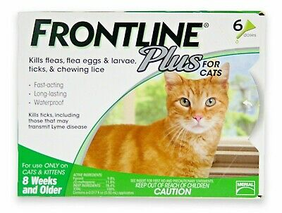 FRONTLINE PLUS FOR CATS Authentic, EPA APPROVED  6 MO Supply FREE SHIPPING !!