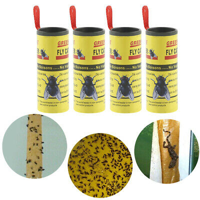Flying Insect Catchers Sticky Trap Strips Poison Free Paper Trap Catchers Traps