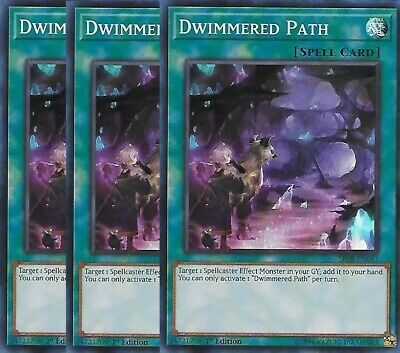 Dwimmered Path - SR08-EN041 x3 HOLO 3x Cards Mint Order of the SpellCasters 1st