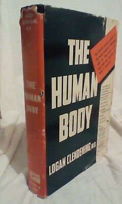 The Human Body by Logan Clendening