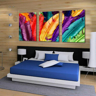 Unframed Feather Modern Abstract Wall Oil Painting Canvas Print Home Decoration
